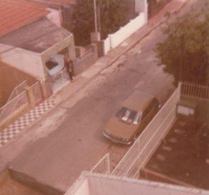 Rua Faisão